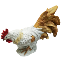White rooster- middle size